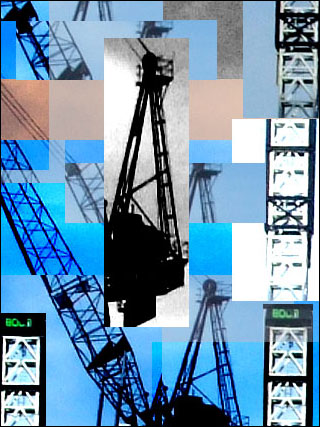 Crane 2006Video still image: Janet Lilo