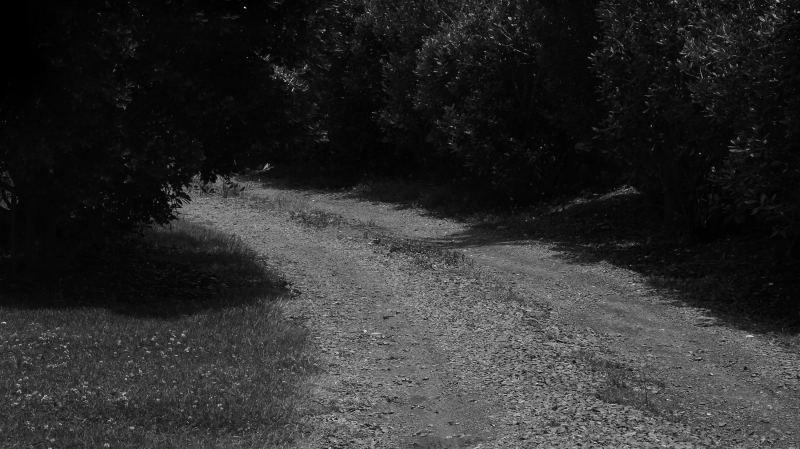 JanetLilo_roadtogoatislanddive