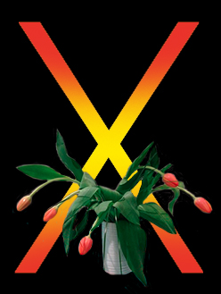 X_flowers
